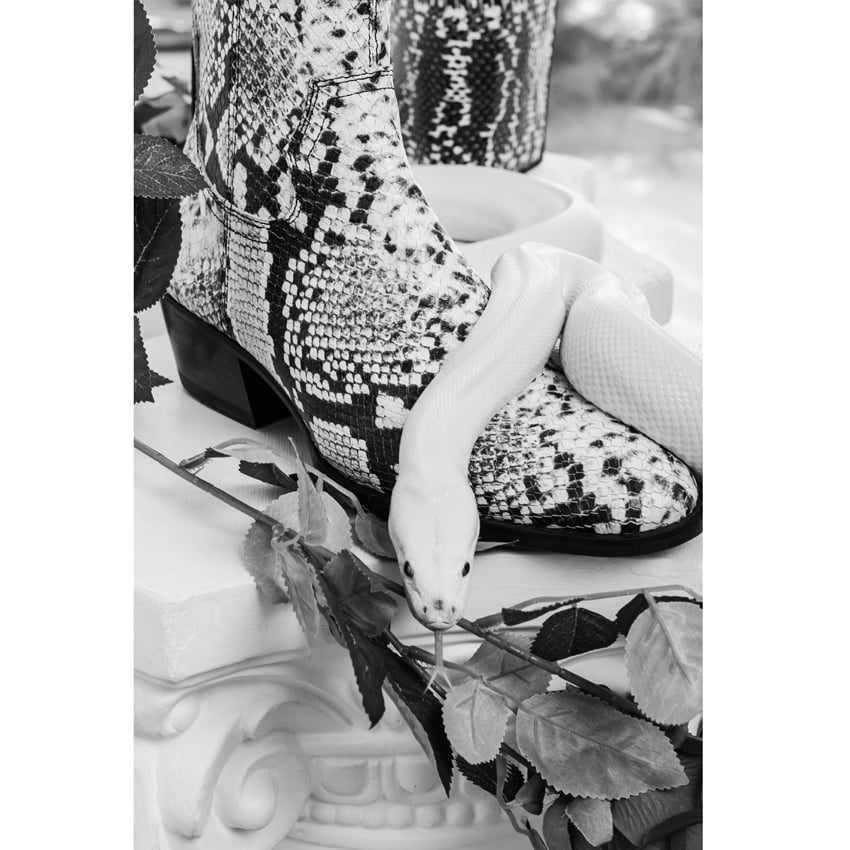 The Snake Zip Boots The Snake Zip Boots 1